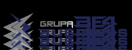 BF4 Business - Planowanie produkcji, Strategia rozwoju firm i przedsiębiorstw